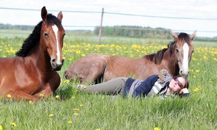 Hevosihminen