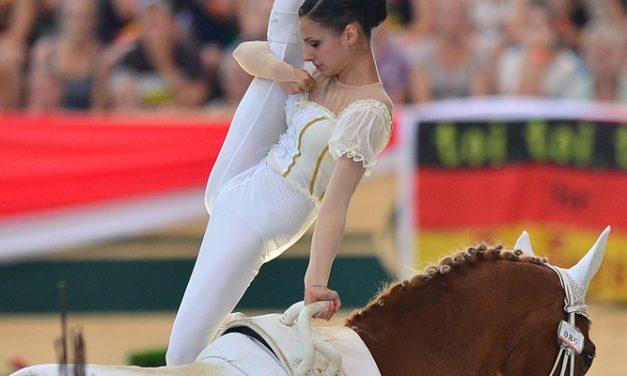 Urheiletko hevosella vai hevosta varten?