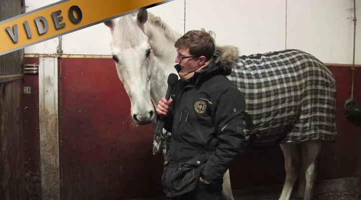 Aki Karhapää ja hevosesittely 2014