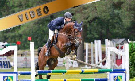 Tie hevosalan ammattilaiseksi Saksassa osa 3
