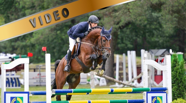 Tie hevosalan ammattilaiseksi Saksassa osa 1