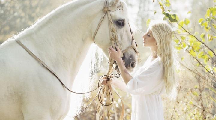 Equitation Haute Couture