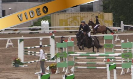 @Salo Horse Show 120cm aluekilpailu 26.6.2014