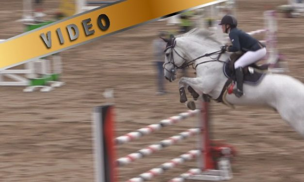 @Salo Horse Show 130cm aluekilpailu 26.6.2014