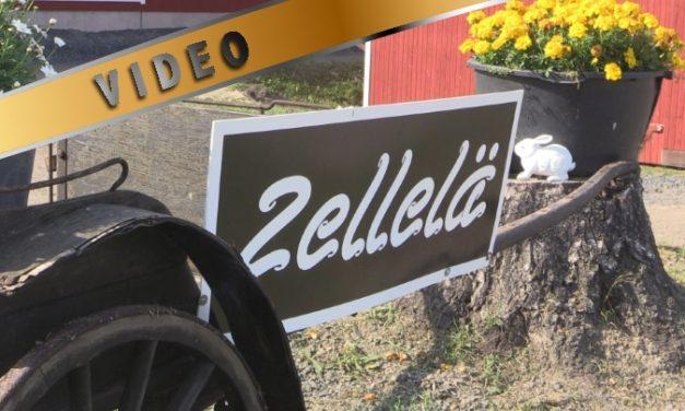 TalliTV Zellelä