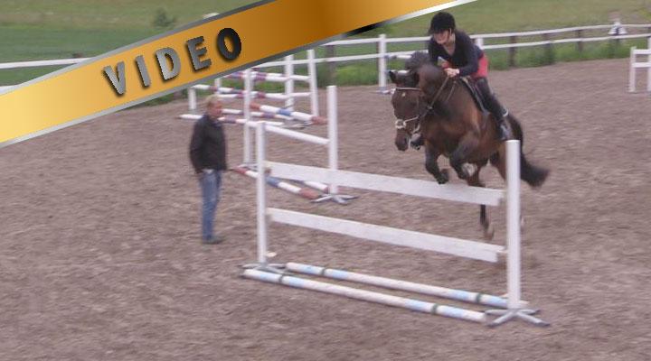 Helposti hermostuvan hevosen ratatreeni, osa 1