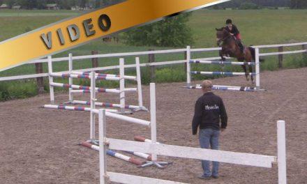 Helposti hermostuvan hevosen ratatreeni, osa 2