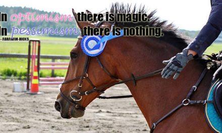 Onko hevosesi juomakuppi puoliksi täysi vai puoliksi tyhjä?