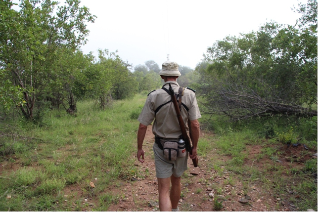 martta_safari