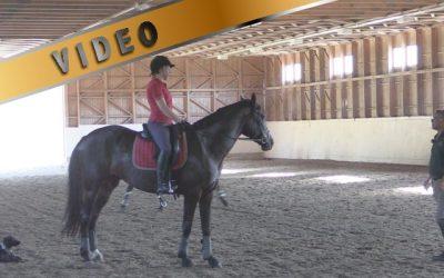 Parempi ryhti ja elastisempi ratsastaja, viikko 1