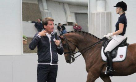 Emile Faurien klinikka – ei mitään taikatemppuja, työntekoa hevosen ehdoilla