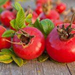Ruusunmarja – kerää talveksi vitamiinit talteen!