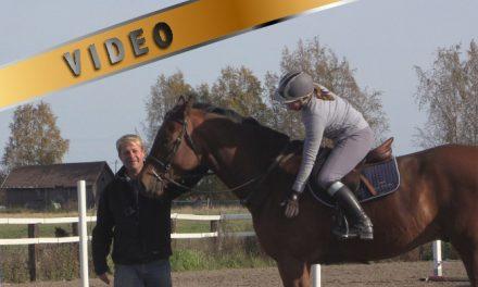 Ensimmäiset puomit nuoren hevosen kanssa