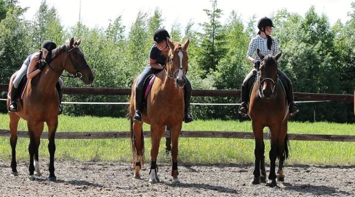Miten valitsen hyvän ratsastuskoulun?