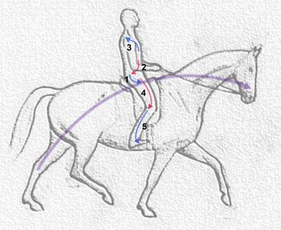 rider_directions