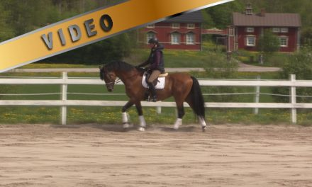 Training with Oliver Polster and Rasmussen P