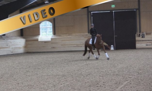 Treenisarja: kouluradan ratsastaminen 2 – Anna von Wendt