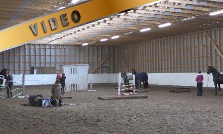 Marcin Mach – Tie hevosen ja ihmisen väliseen luottamukseen IV