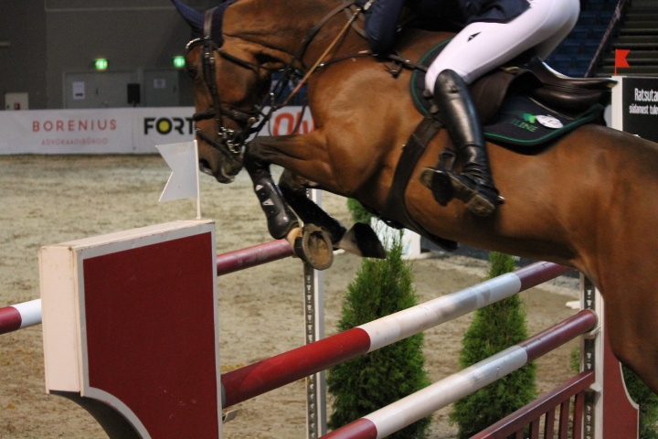 @Tallinna Horse Show