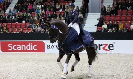 *Haastatteluja @Helsinki Horse Show