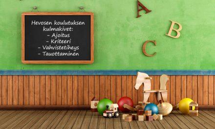 Tuire Kaimio – Kouluttamisen kulmakivet