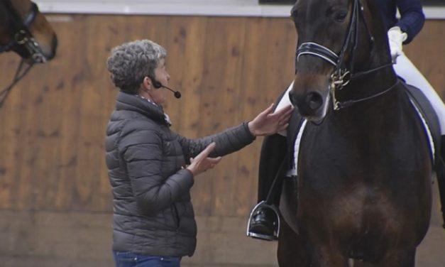 Kyra Kyrklund – hevosen kokoaminen