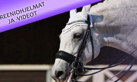 Hermostuneen ja jännittyneen hevosen ratsastaminen