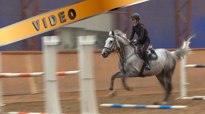 Junioritreeni – Hevosen jumppaaminen ja oman asennon kehittäminen
