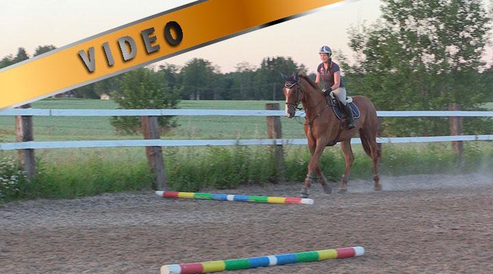 Kuuden puomin kolme tehtävää – kokematon hevonen